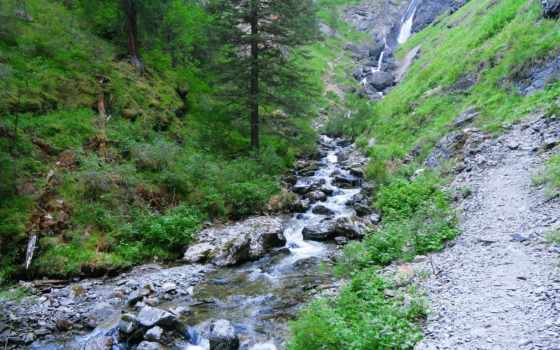potok, górski, kamienie, lasy, pulpit,