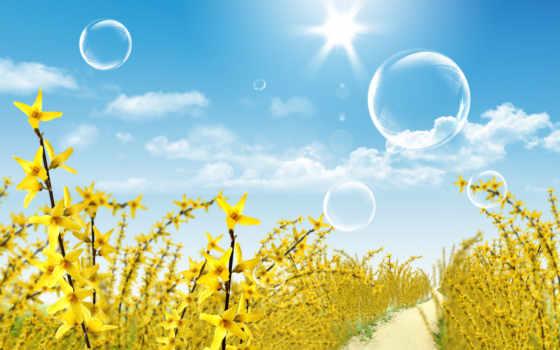 цветы, пейзажи -, растения
