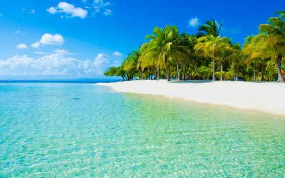tropical, пляж, water, остров, море, beaches, caribbean, trees, photos, ocean,
