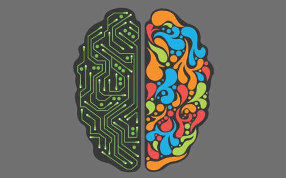 минимализм, мозг
