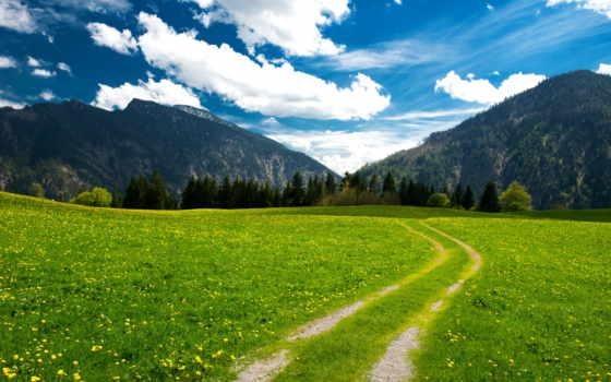 montanhas, parede, paisagem, árvores, céu, papel, nuvens, natureza, alpes, pasto,