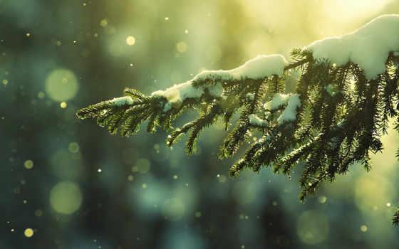 зима, снег Фон № 32023 разрешение 1920x1080