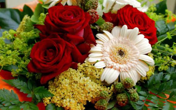 цветы, букет, розы
