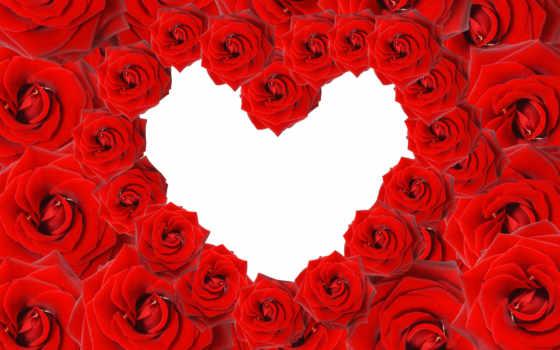 red, прислал, кб, рейтинг, просмотров, монитора, дата, роза, roses, избранном, сердце,
