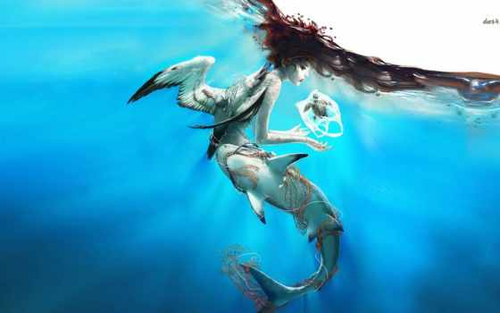 русалка, акула, птица, art, fantasy, fish, waters, черепаха,