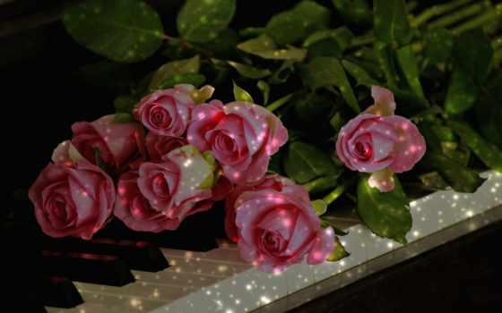 всегда, мне, всем, розы, аромат, thank, любви, желаю,
