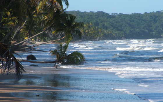 trinidad, tobago, mayaro, пляж, bay, beaches, this,