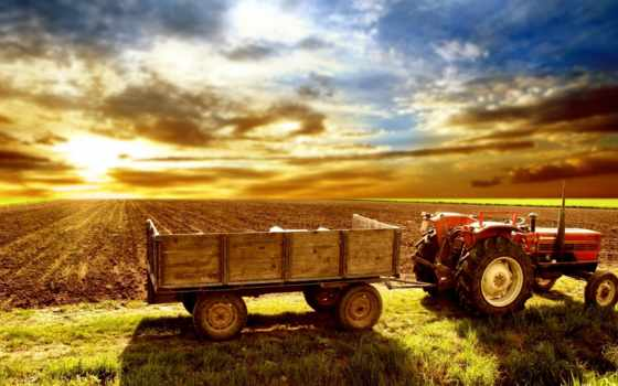 farming, pinterest, симулятор, поля, ферма, об, images, agriculture, country, more,