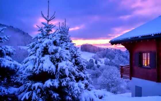 winter, levy, desktop, нояб, зимние, праздничные,