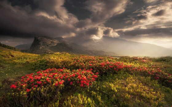 гора, цветы, narrow, хороший, небо, станция, stoloboi