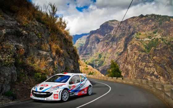 rally, peugeot, white, wrc, машина, спорт,
