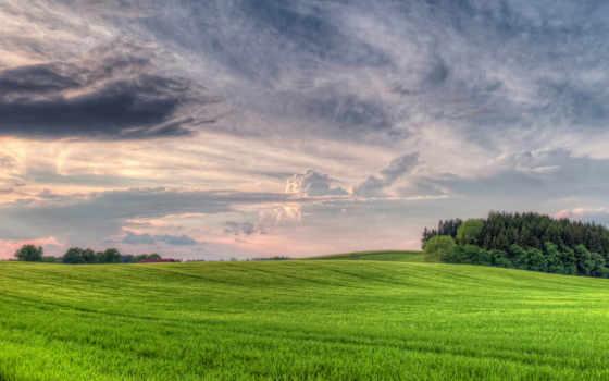 поле, лес, луг, небо, пасмурно, объемные, oblaka, ширь,