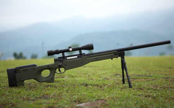 винтовка, снайперская, arctic