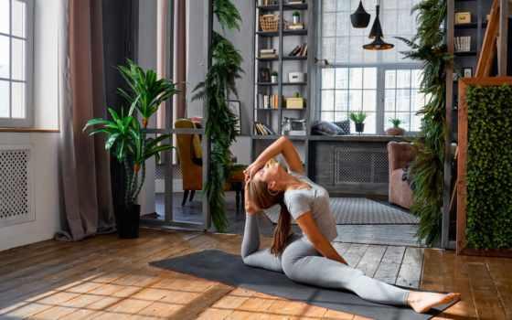 devushki, шатенка, спорт, фитнес, тренировочный, красивые, упражнения, физические, гантели, рубашка, спортивная,