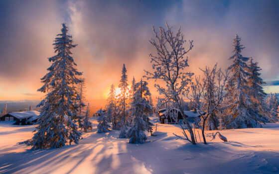 коллекция, winter, яndex, allan, user, смотреть, снег, trees, природа, jorn