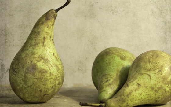 груша, pears, плод, еда, зооклубе,