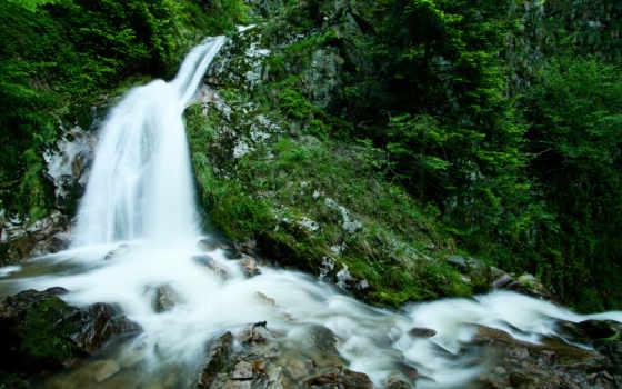 водопад, лес, качества