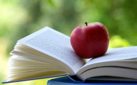 apple, книга, плод