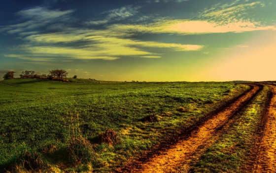 поле, дорога, закат