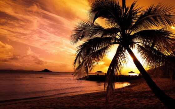 широкоформатные, закат, красивые, landscape, море, берегу, palm, waves, хорошем, тучи,