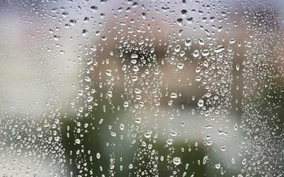 дождя, после, капли, телефон,