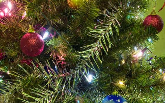 год, новый, rapidshare, rar, елку, letitbit, bakıda, turbobit, новогодние, yolka, одессы, декабря, площади, главную, изображение, думской, yeni, files, korogan,