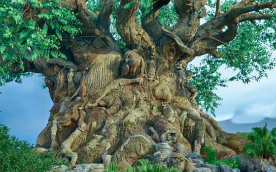 резьба, дерево