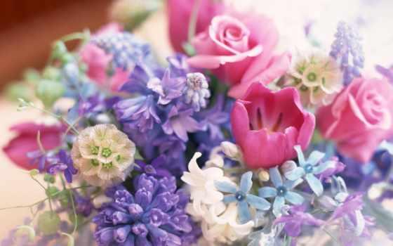 цветов, букет, цветы, большой, букеты,