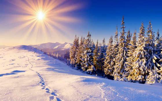 утром, добрым, зимние, пейзажи -, зимы, winter, дек, снег, зимним, трудом,