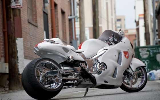 suzuki, gsx, hayabusa, мотоцикл, мотоциклы, white, качественные, предпросмотром,
