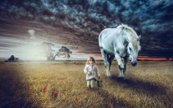 лошадь, ребенок, прогулка, photoshop, rural, поле