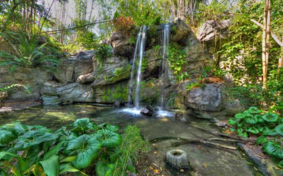 растения, водопад, скалы
