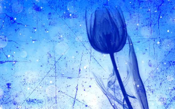 текстуры, тюльпан, штрих, cvety, страница, blue, android, have, gdefon,