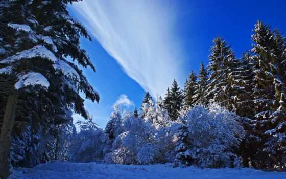 winter, browse, снег, лес, страница, река, htc, природа,