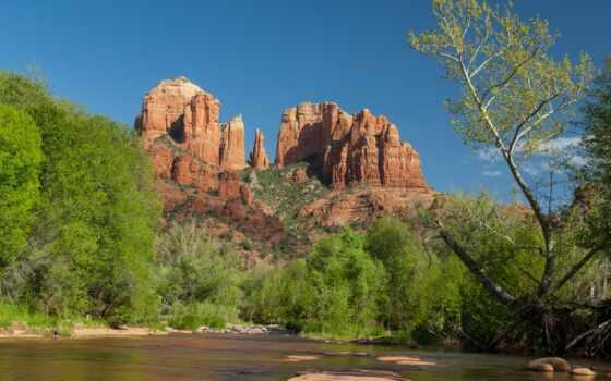 песок, деревья, скалы, зелень, вода, корни, картинка,