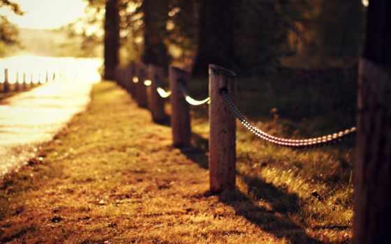 осень, нашей, виновата, грусти, надписью, картинка, надписями, ферма, биг, server, рай,
