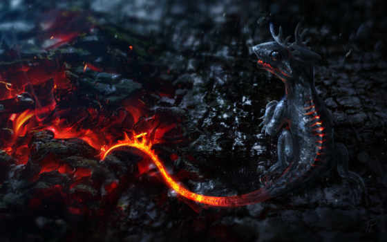 salamandra, саламандра, огонь, огненная, салама, лава, дракон, lat, ндра,