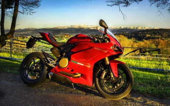 ducati, red, superbike