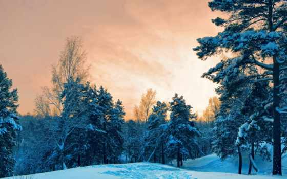 лес, winter, года, города, fone, дома, time, разрешениях, разных, природа,