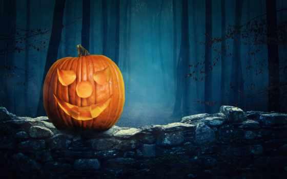 halloween, праздник, тыква, лес, mysticism, mystique,