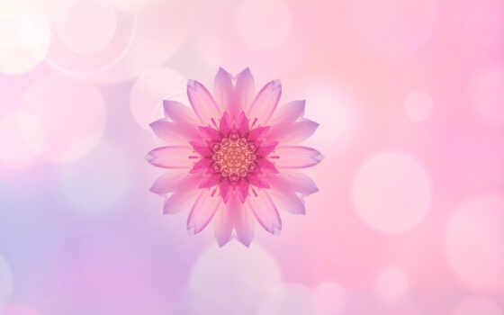 huawei, honor, stock, розовый, цветы,
