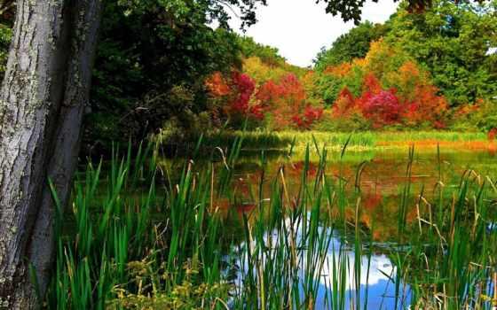 природа, озера, реки