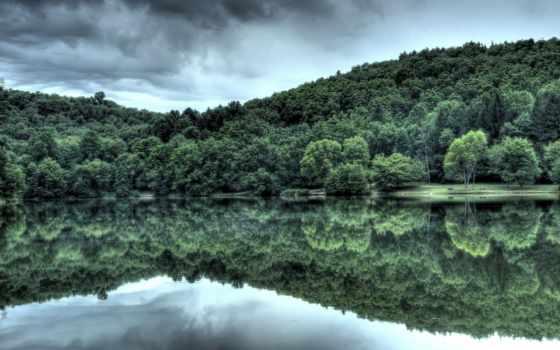 water, отражение, лес, которых, trees, тег, всех, есть, река, леса,