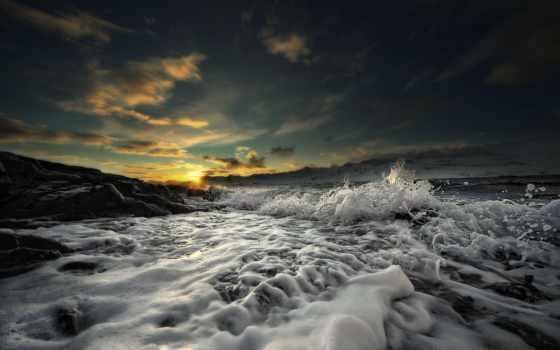 природа, waves, широкоформатные, вас, оставить, sleeping, кот, котенок, категории, красивые,