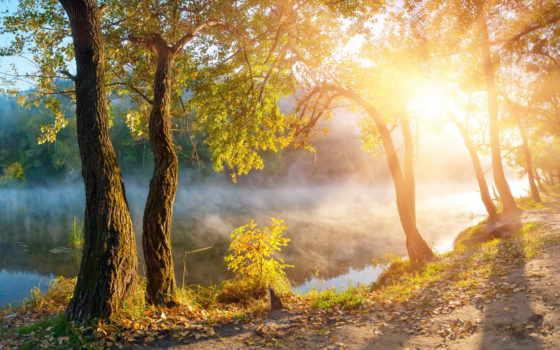landscape, осень, природа Фон № 131299 разрешение 2560x1600