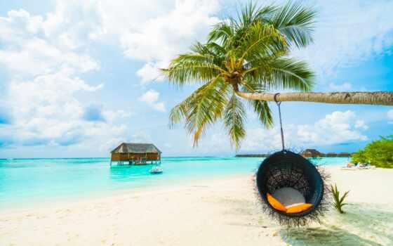 пляж, palm, море, tropic, природа, landscape, кокосовый, tropical, сохранение, небо, оценка