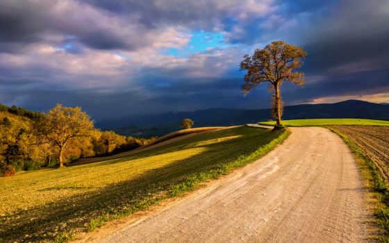 природа, поля, небо, italy, широкоформатные, дерево,