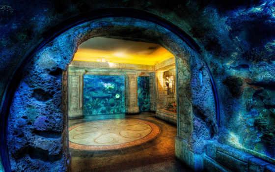 аквариум, зале, zhivotnye, широкоформатные, графика, разрешением,