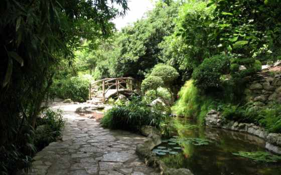 zilker, botanical, austin, garden, park, gardens, japanese, mapio, tx, barton,