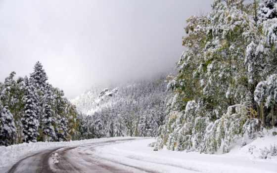 дорога, winter, trees